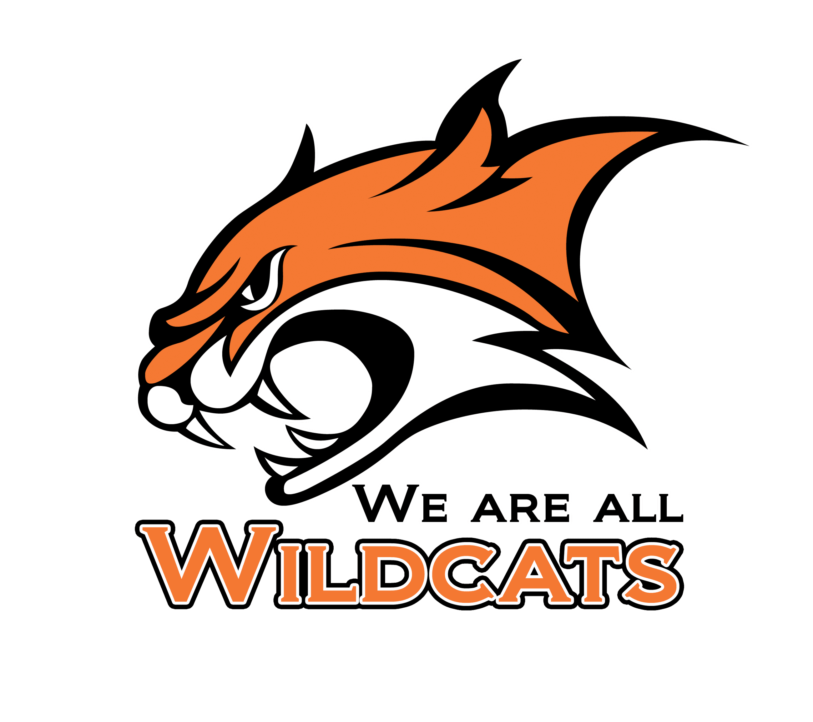 We Are All Wildcats