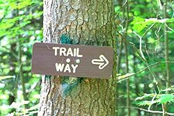 Trail Way